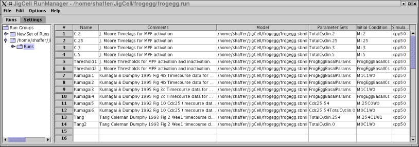 Run Manager with Frogegg model loaded